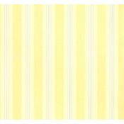 Stripe Resource III